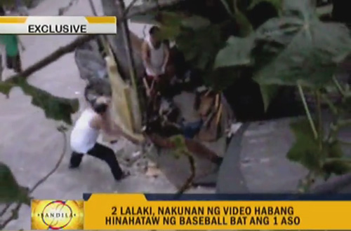 DepEd staff caught on video abusing a dog