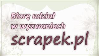Wyzwania scrapek.pl