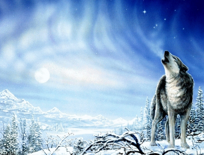 Magnificent wolf wallpapers unique wallpaper - Wolf howling hd ...