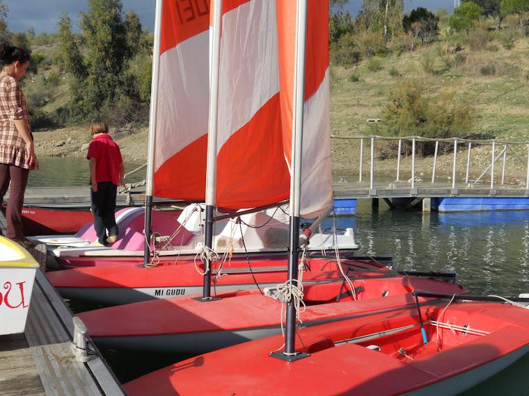 Flotilla de Toppers