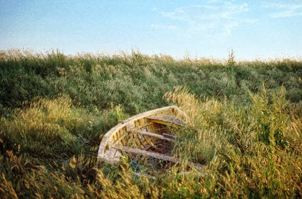 Benedetta Falugi. Photography | Fotografía