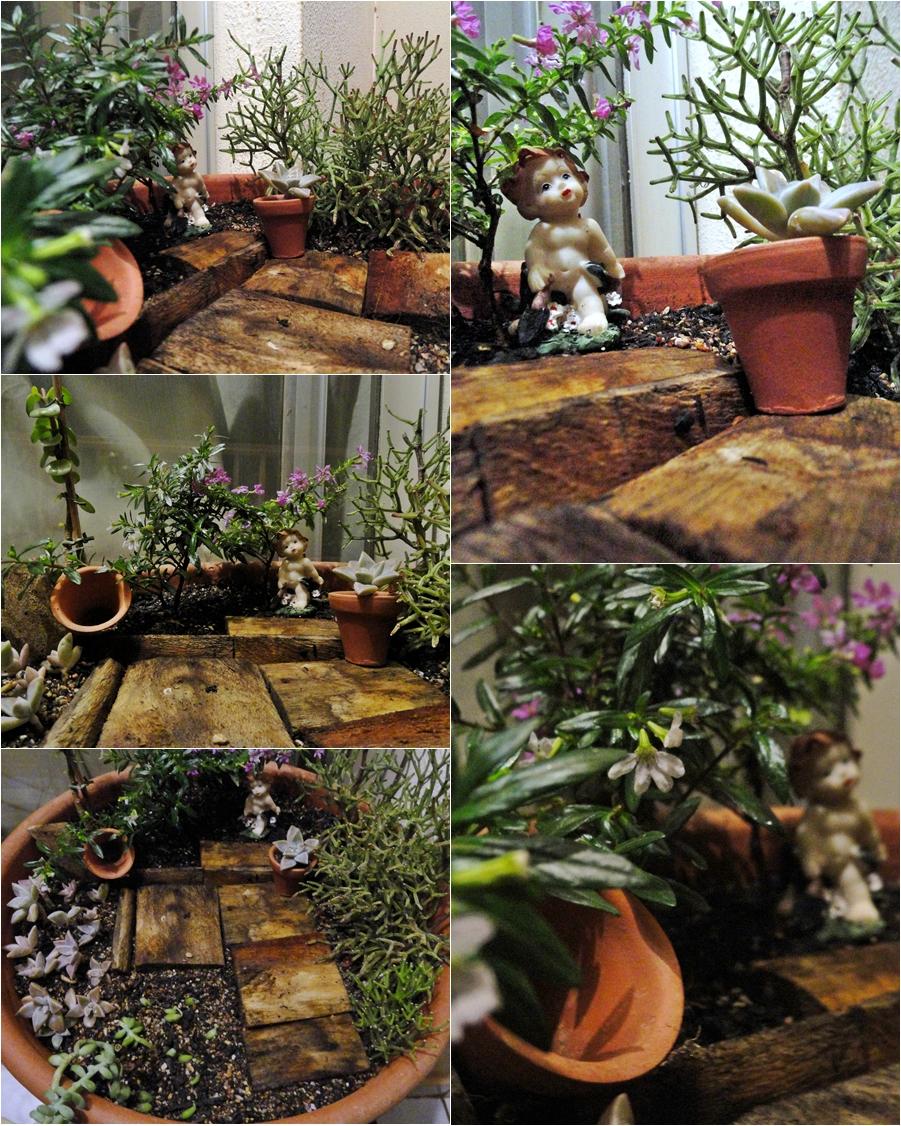 Esse passo a passo do mini jardim tirei desse blog aqui! É ótimo