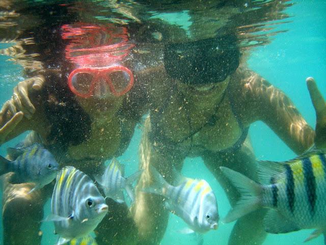 Mergulho Maragogi Brasil D&D Mundo Afora