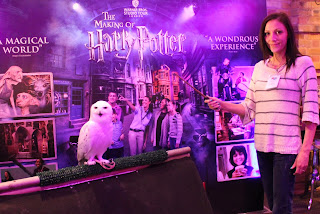Hedwig the snowy owl from the films Harry Potter sitting on a perch having pictures taken with attendees of BritMums Live p