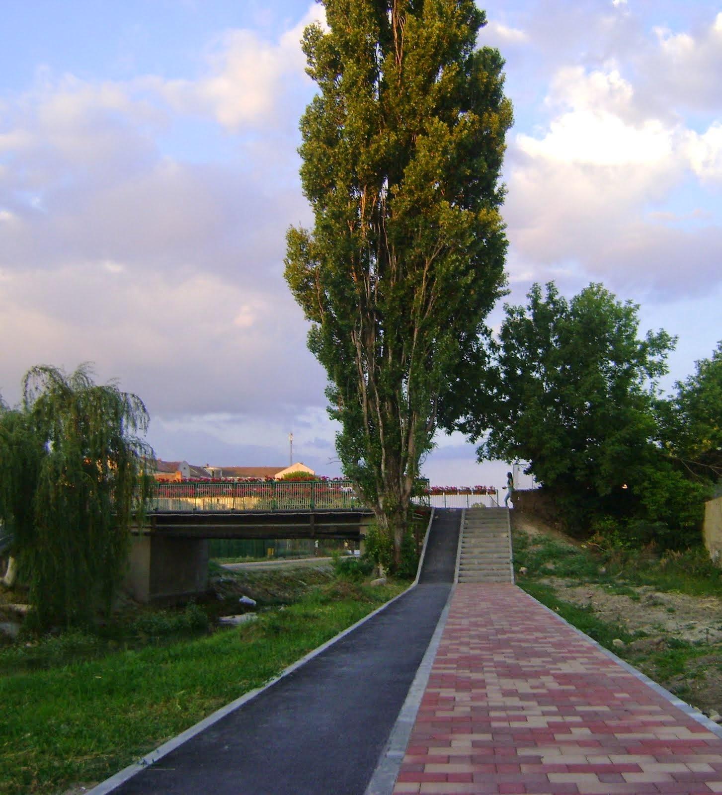 Alee pe malul canalului Aranca