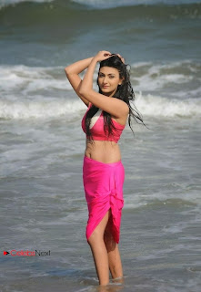 Actress Neelam Upadhyay  Wet Picture Gallery in Pink Bikini Top 0061.jpg