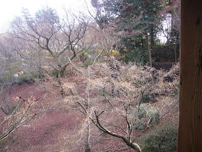 京都初詣ウォーキング・東福寺