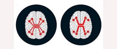 Los limites del cerebro