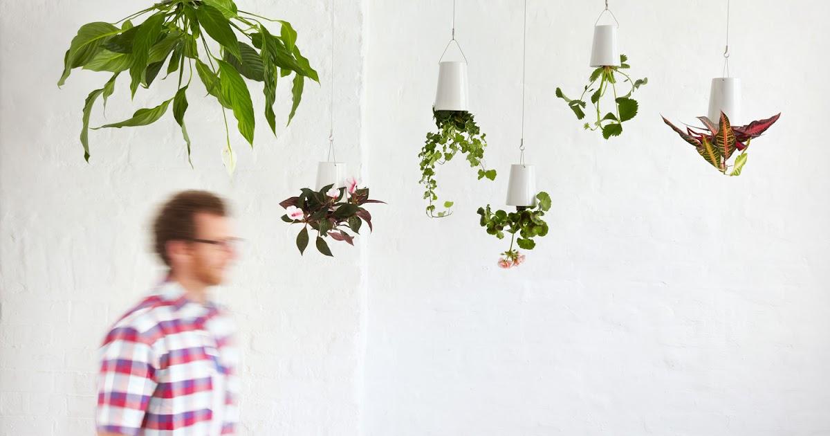 Sin salir de tu casa crea un boskke en tu casa for Crea tu casa online