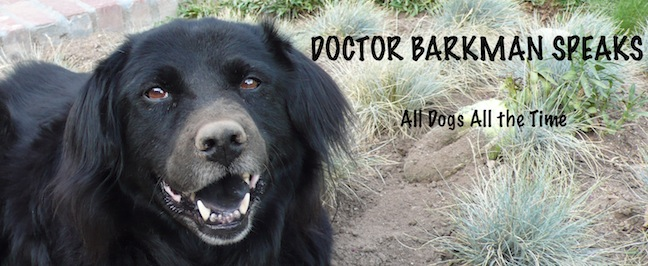Doctor Barkman Speaks