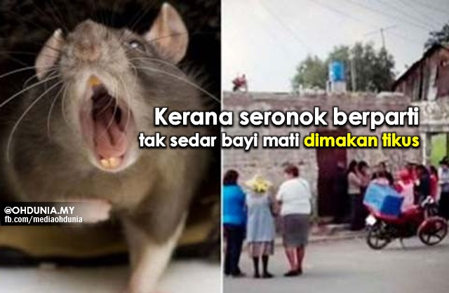 Kerana Seronok Berparti, Tak Sedar Bayi Mati Dimakan Tikus