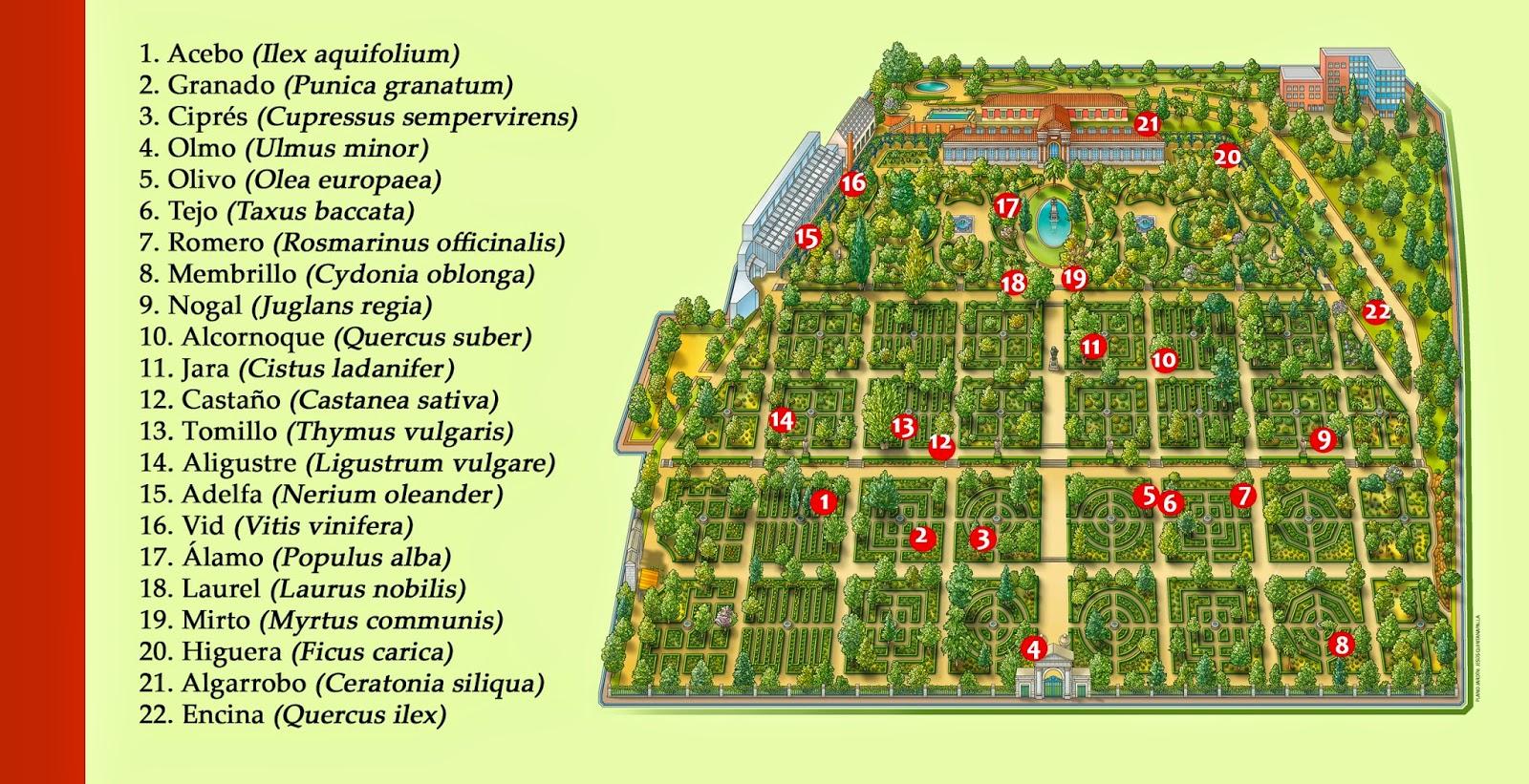 Las plantas en el quijote for Plantas de un jardin botanico