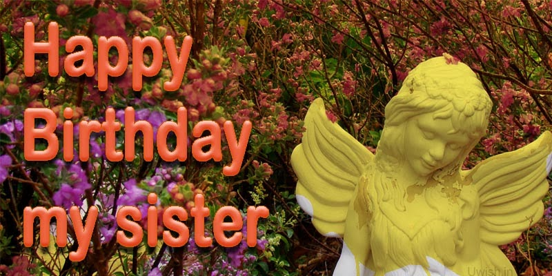 Happy Birthday to sister greetings and wishes with Angel and flowers.
