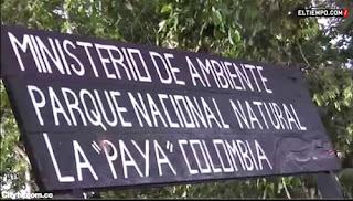 Parque nacional natural La Paya en Colombia