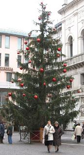 Christmas tree in Padova