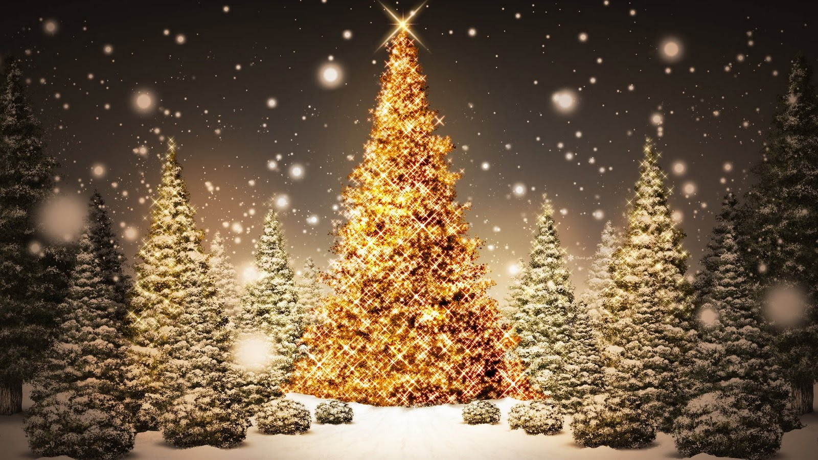 Resultat d'imatges de festes nadalenques