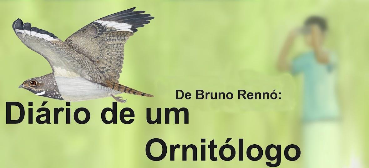 DIÁRIO DE UM ORNITÓLOGO