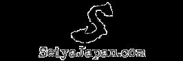 Seiya Japan - Casio Watches JDM References