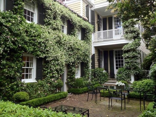 a curious gardener southern courtyard gardens