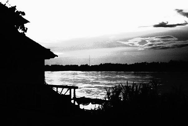 Cactus River, de Apichatpong Weerasethakul
