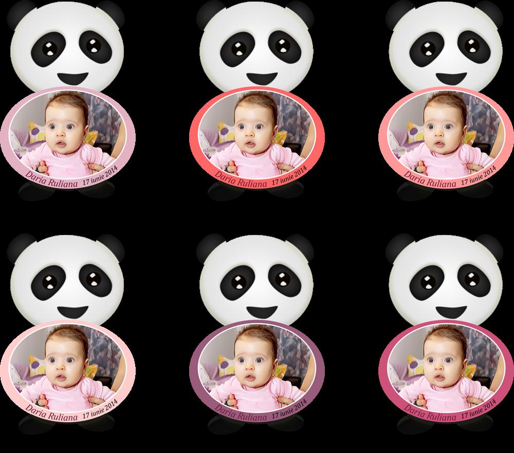 marturii botez magneti panda