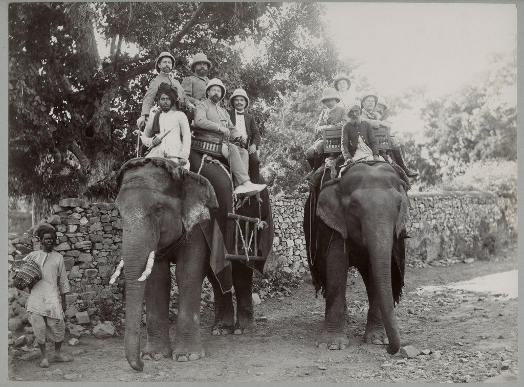 European Group on Indian Elephants - c1890's