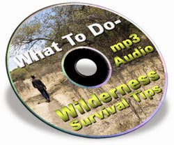 Wilderness Survival Tips