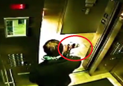 perrito olvidado fuera del elevador con correa