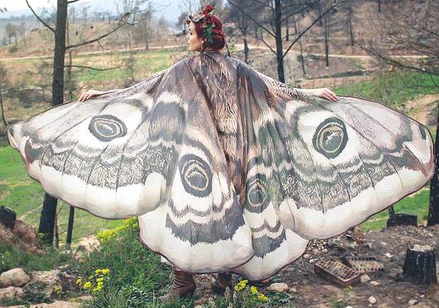 Motylem jestem ;)