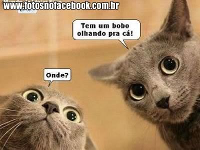 Imagenes Con Frases Bonitas Para Compartir En Whatsapp