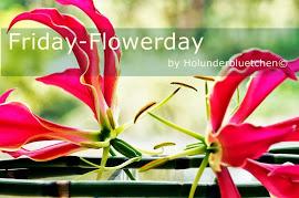 FlowerFriday beim Holunderblütchen