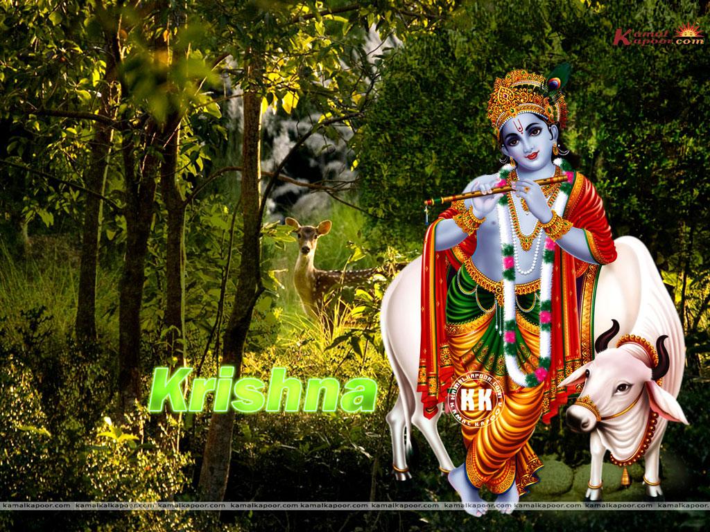 http://4.bp.blogspot.com/-udWH1_Tu27Q/TlEhrifUwJI/AAAAAAAABJ0/JXW_JPuDG2c/s1600/Krishna+Wallpaper.jpg