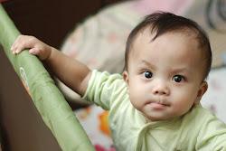 umur 8 bulan
