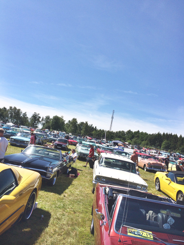 wheels & wings 2015, motorbanan i falkenberg, fbg,