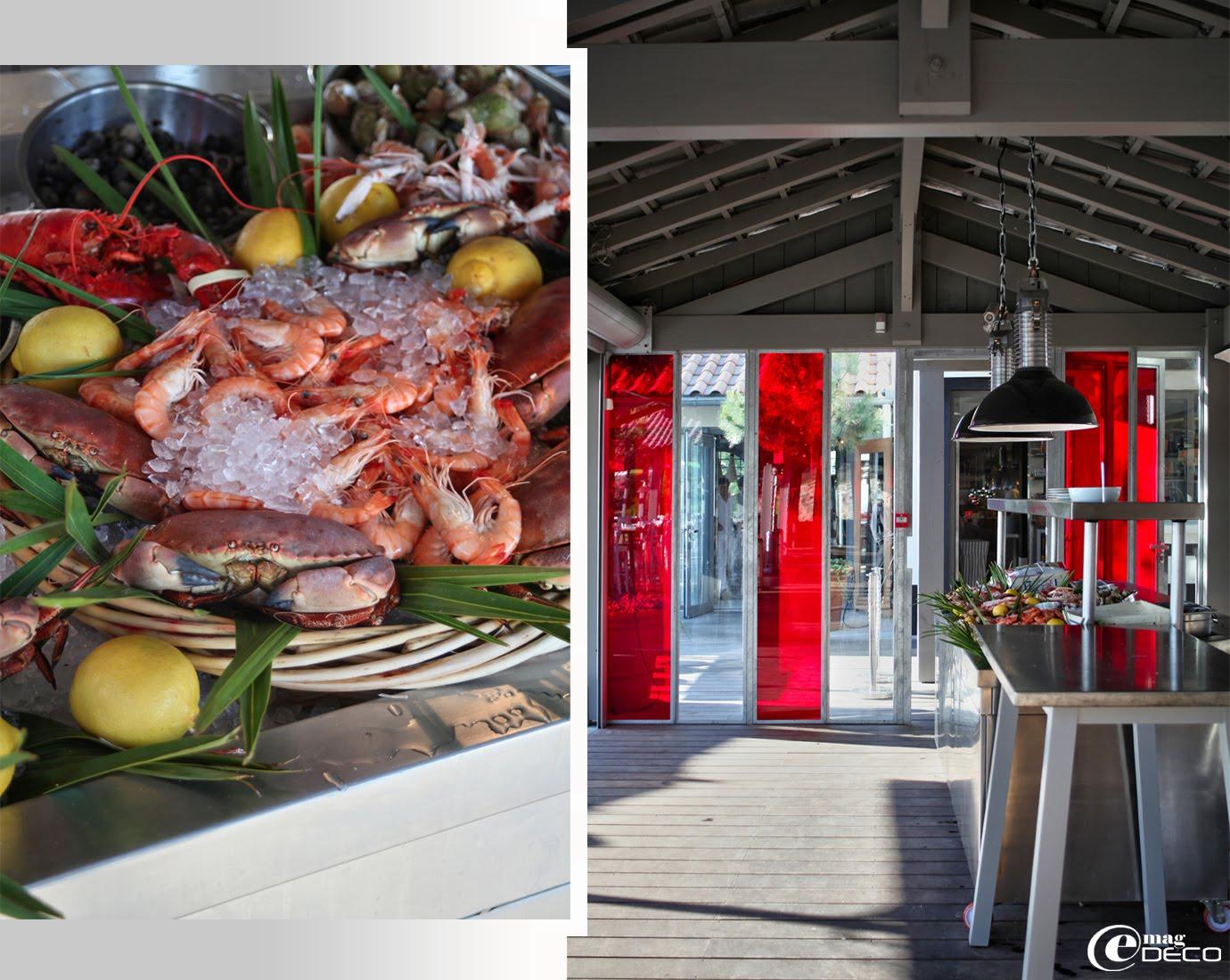 Le bar extérieur et l'étal de l'écailler à La Co(o)rniche réaménagé par Philippe Starck