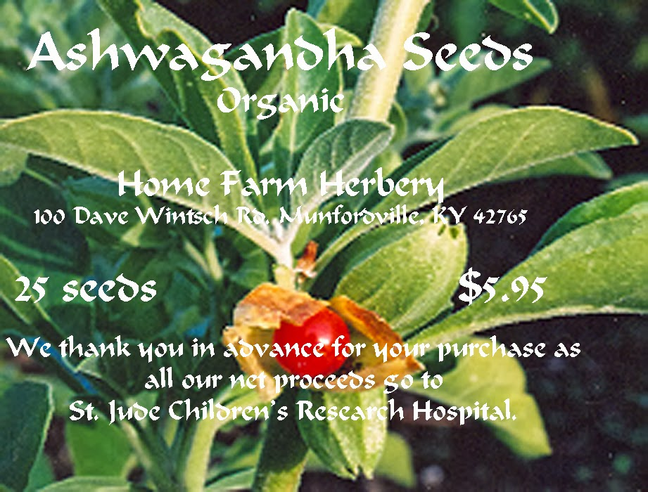 Ashwagandha For Sale