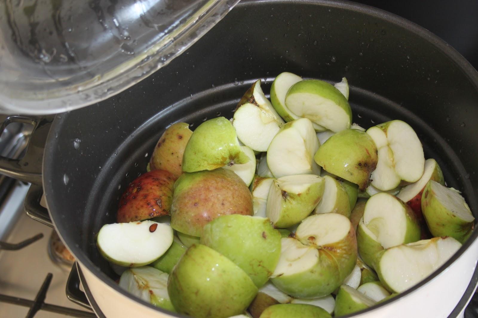 La cuisine de bernard gel e aux pommes - Gelee de groseille avec extracteur de jus ...