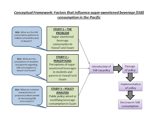 conceptual framework for dissertation
