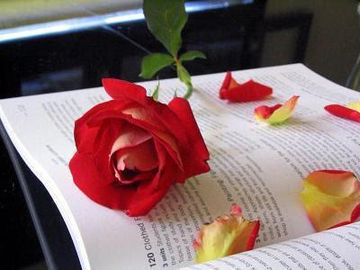 Lettre d'amour pour mon bien aimé 3