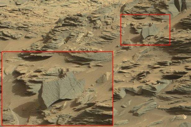 Escorpião pode ter sido fotografado por robô da Nasa em Marte