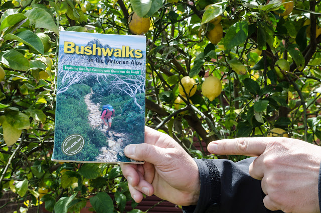 holding book bushwalks in the victorian alps by glenn van der knijff