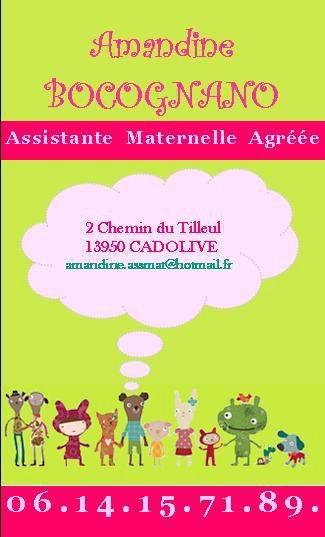 En Attendant Dalimenter Ce Blog Sur Lunivers De La Garde Denfant Voici Ma Carte Dassistante Maternelle Agreee
