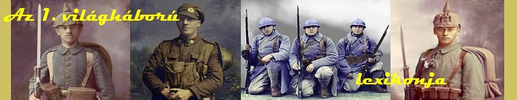 Az I. Világháború lexikonja