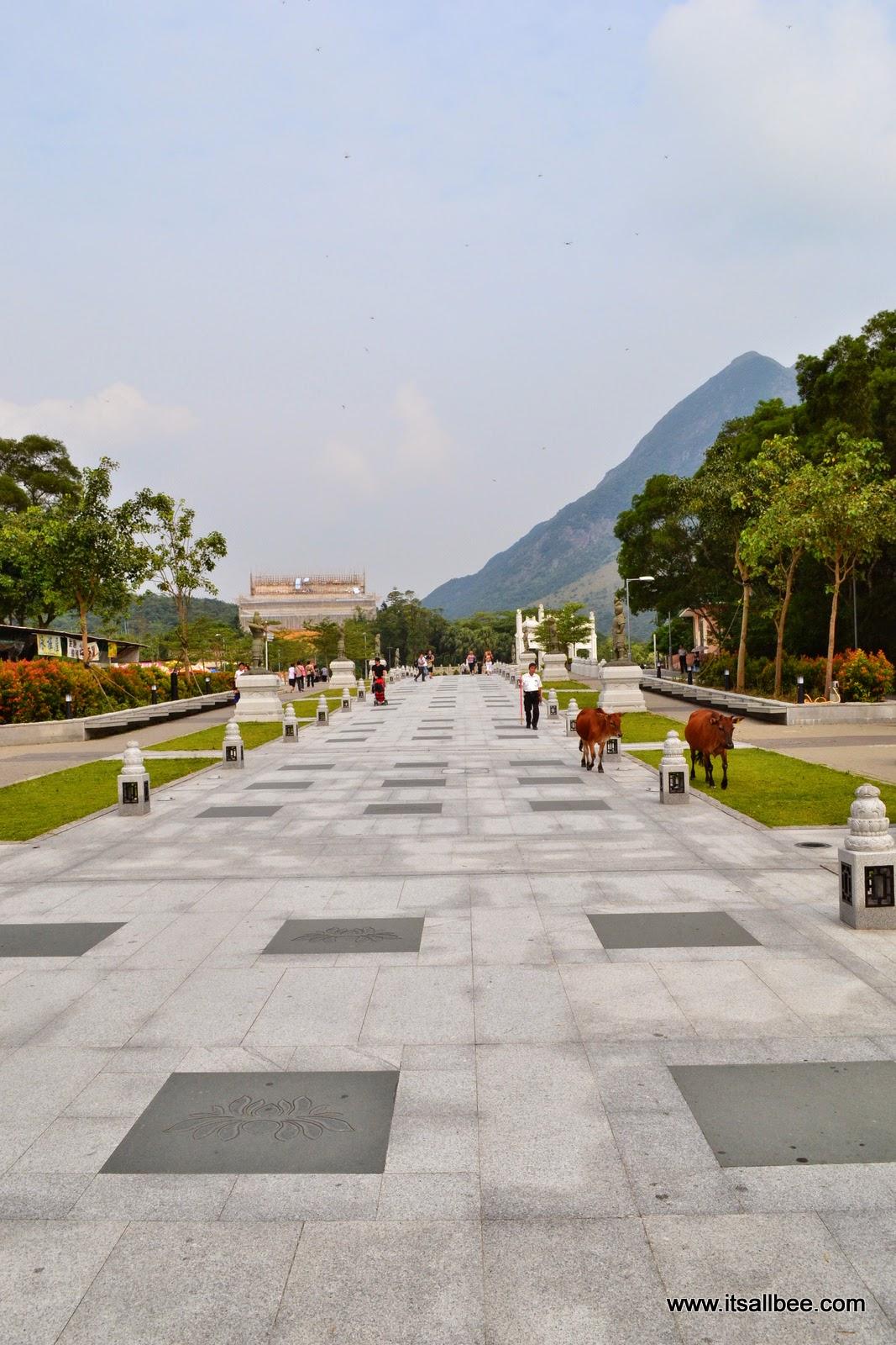 Lantau Island | Big Buddha & Twelve Divine Generals