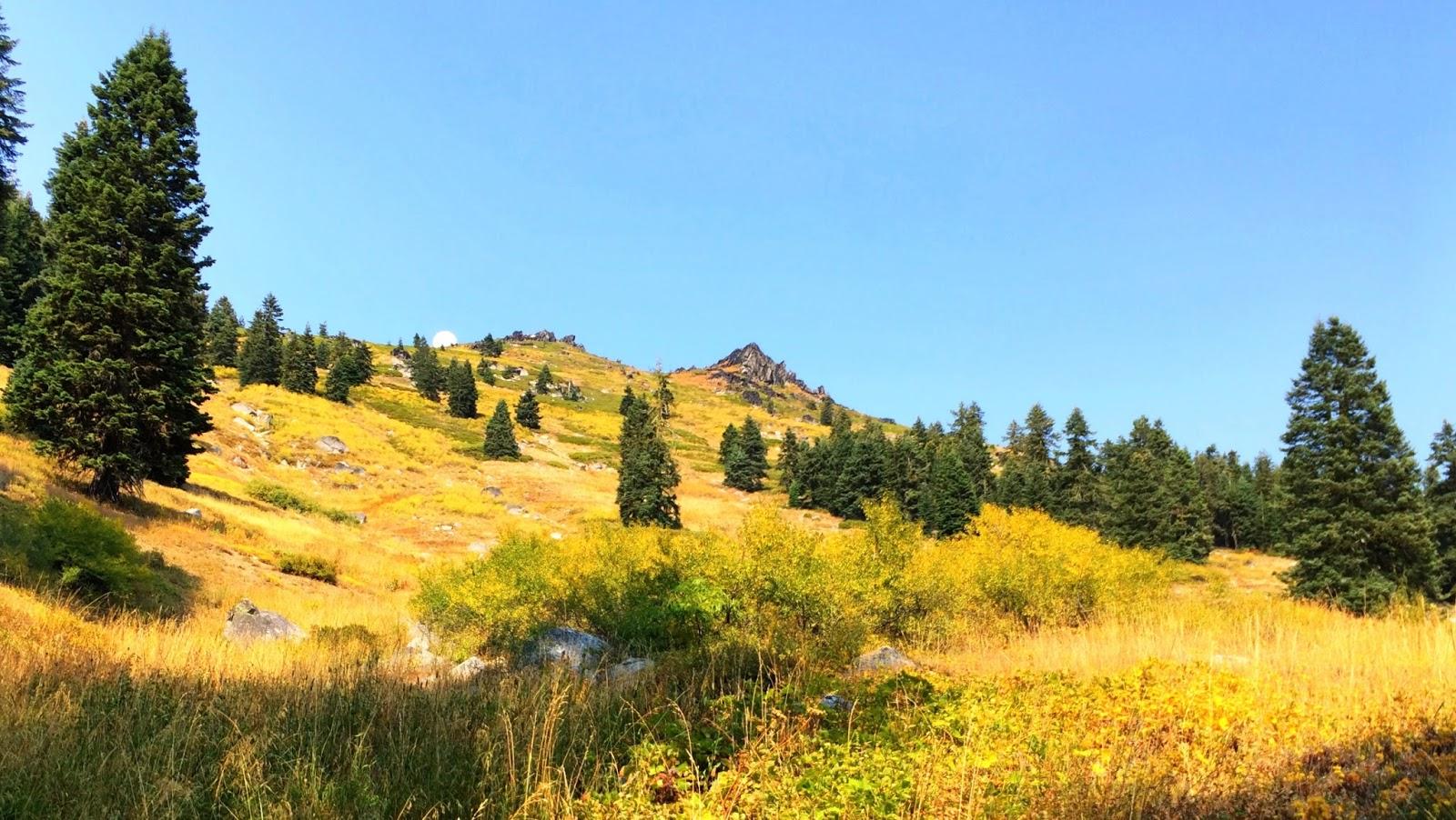 the fall colors contouring around mt ashland