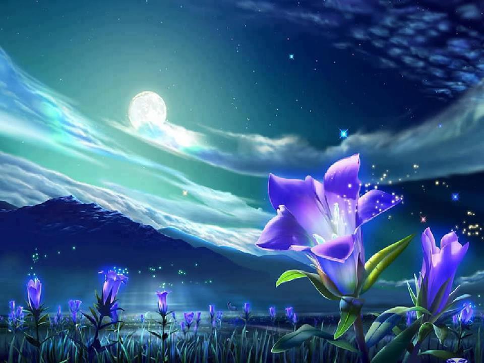 Www.Imagenes De Flores Bonitas.Com - Imágenes De Las Flores Mas Hermosas Imagenes de