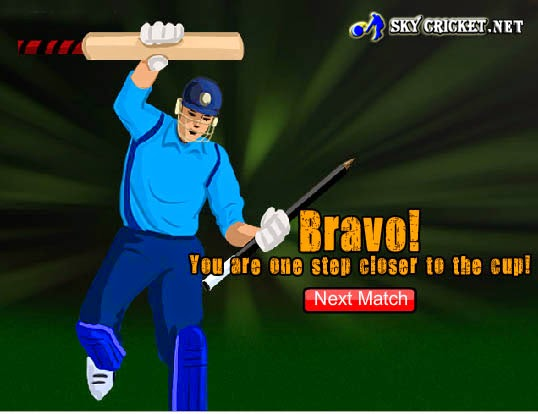 Play the Dominator Cup Cricket Game