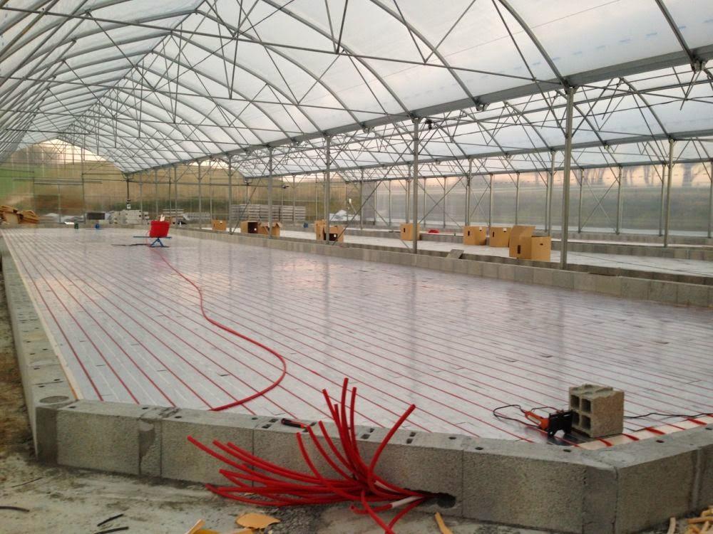 Vue d'une serre avec 3 bassins représentant 1000m2 de plancher chauffant pour chauffage spiruline