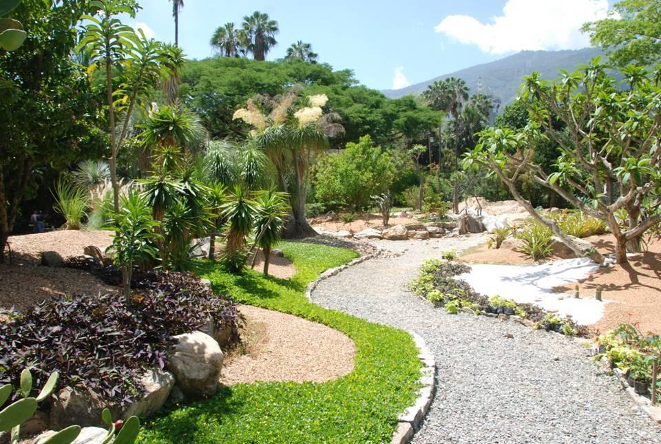 Ecoscopio el parque guatamare puede ser convertido en un for Caminerias de jardin