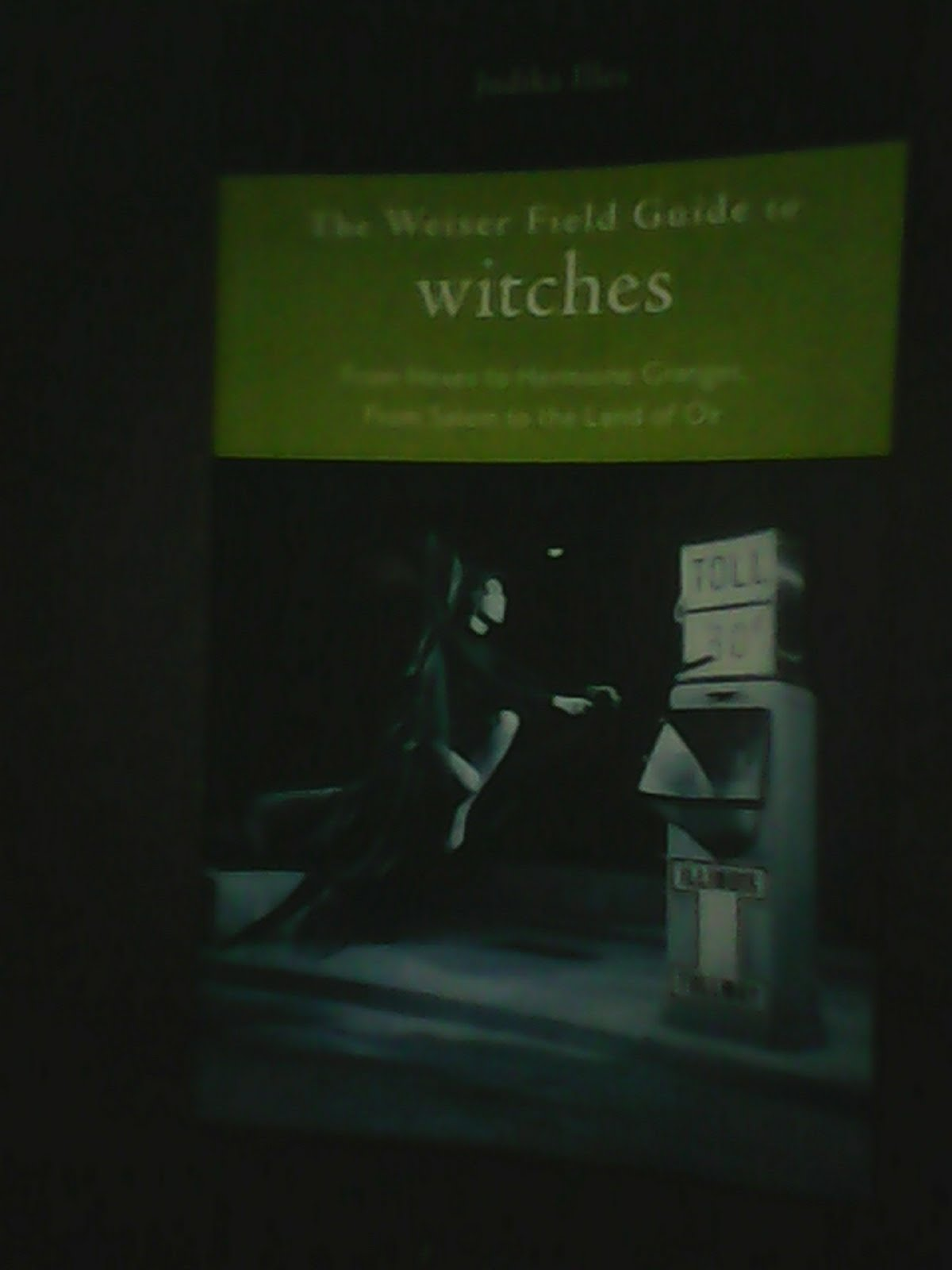 'The Weiser Field Guide to witches' by Judika Illes.